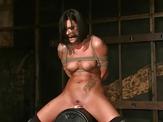 Miss Evans Soaks The Sybian | Squirt.top Porn Tube